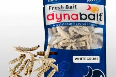 Dynabait white fishing worms