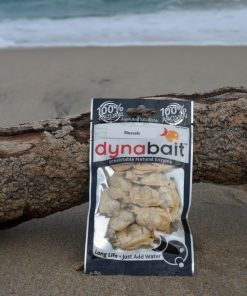Dynabait fishing bait mussels are great for bream and Drummer