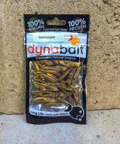 Grasshoppers fishing bait can be used for catching pah fish and trout